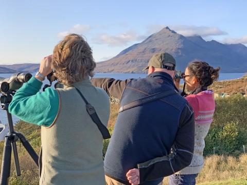 Full Day SKYEFARI Wildlife Watching Tour