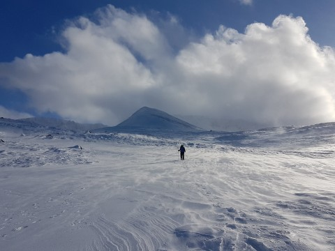 New Year Cairngorms Winter Walking