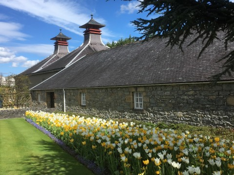 Private Tour along the Whisky Trail ( one to six days)