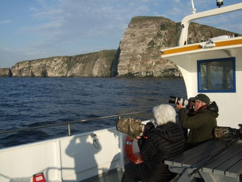 No.1 Noss Boat Tours - Early Bird Photography Cruise Wi...