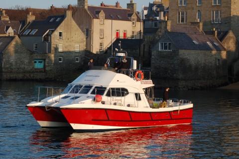 Noss Wildlife Boat Tour