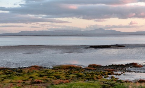 Secret Solway Tours - Dumfries and Galloway