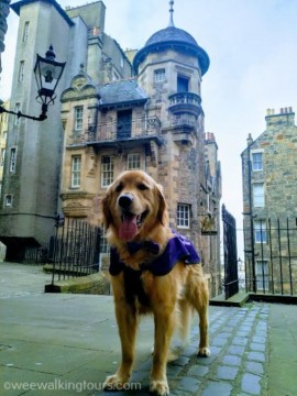 Wee Golden Walk I: From the Castle to the Palace
