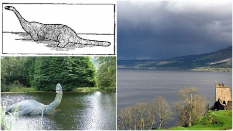 Loch Ness & Inverness - 1 Day Tour