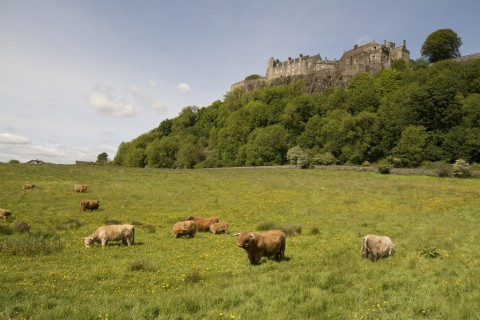 Stirling and Trossachs National Park