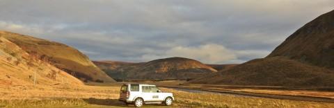 Highland Wildlife & Birdwatch Safaris