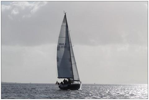 Islay whisky week sailing