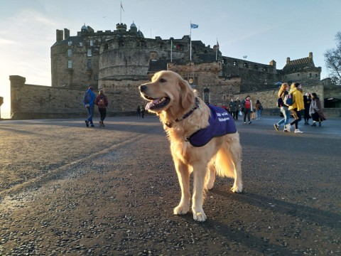 Wee Golden Walk II: From the Castle to the Monuments