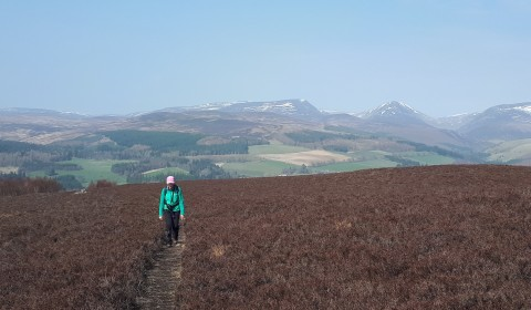 Above the Soldier's Leap - Wednesday 21 October 2020