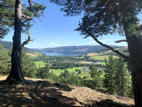 Rogues, Picts and Vikings above Loch Ness