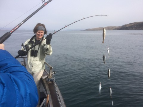 3 Hour Mackerel Fishing Trip
