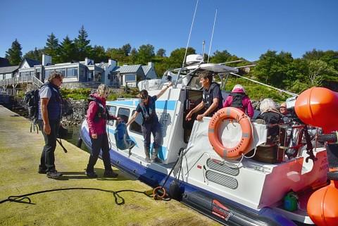 Handa Island Stacks and Seabirds Tour