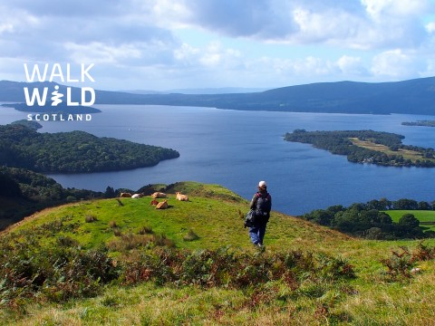 Walking Day Tour Loch Lomond - Private Tour