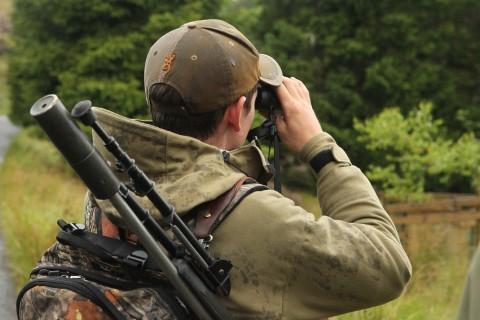 Red deer stag stalking trip - Highland Perthshire